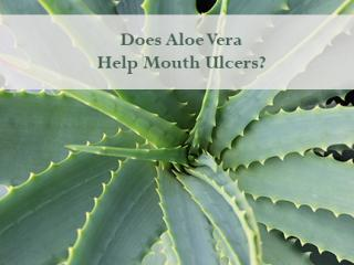 Does-Aloe-Vera-Help-Mouth-Ulcers-White