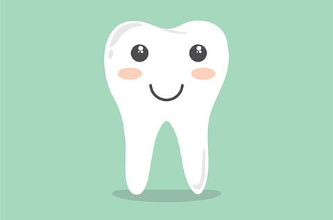 Looking For a Guelph Dentist That Takes Payment Plans