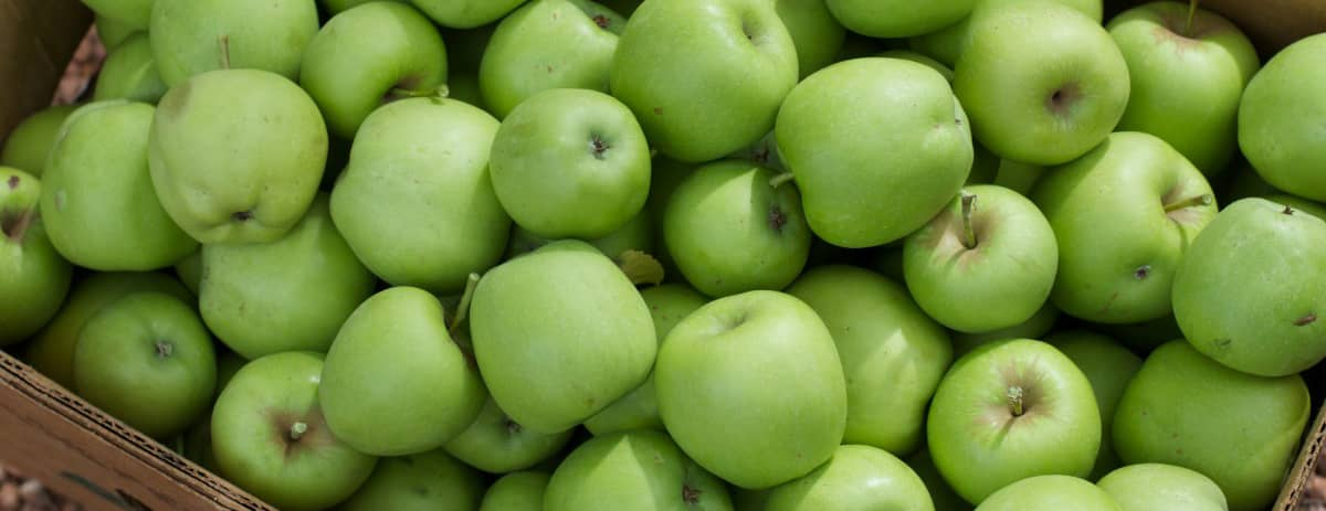 Apples Superfoods For Your Teeth