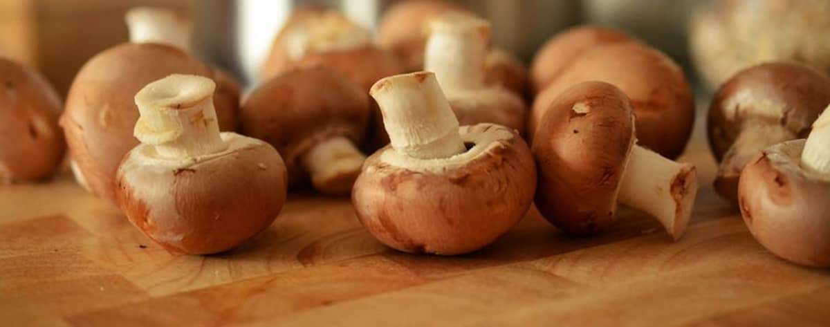 Mushrooms Superfoods For Your Teeth