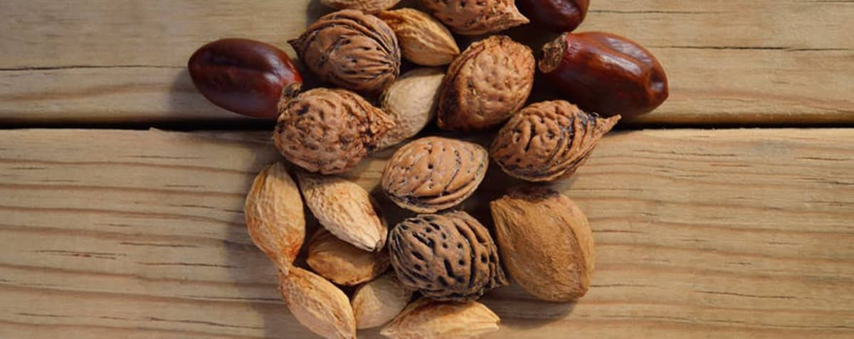 Nuts Superfood For Your Teeth